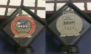 Custom 3D Suspension Awards