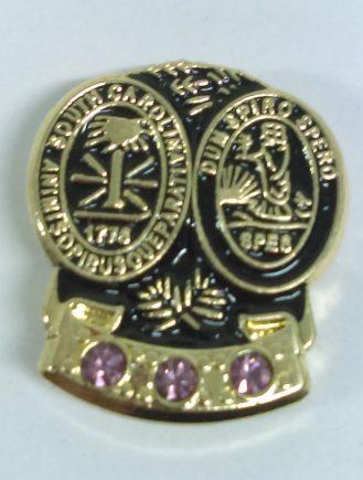 SC 20 YR PIN